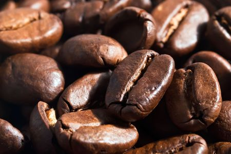 many coffee beans background v2 photo
