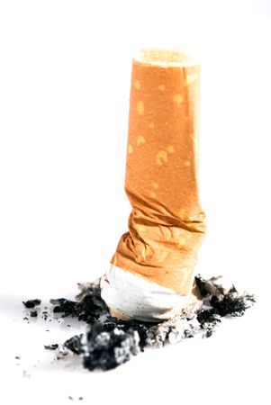 cigarette butts pressed out isolated on white photo