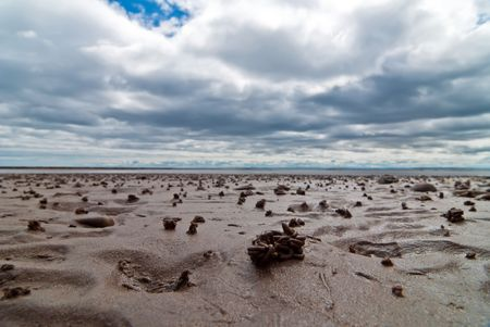 lugworm: lugworm pile on the beach with clouds and sky Stock Photo