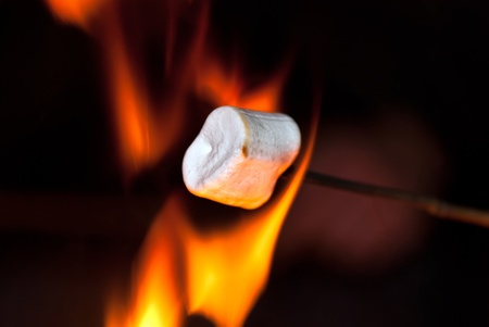 bonfire night: Marshmallow on a stick over the fire