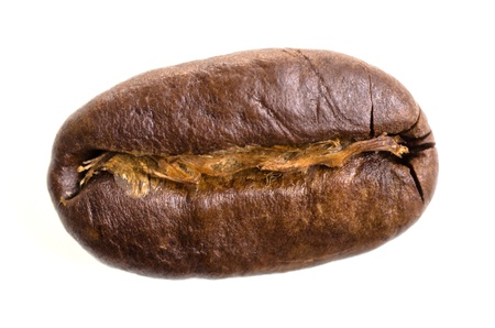 one espresso bean isolated before white background