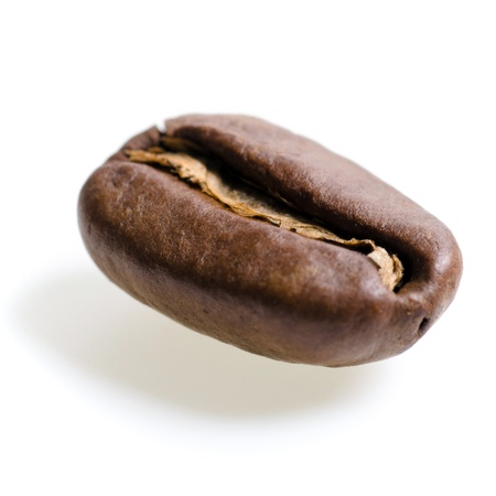 robusta: one espresso bean isolated before white background