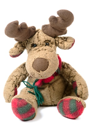 nonsense: moose as cuddly toy before white background