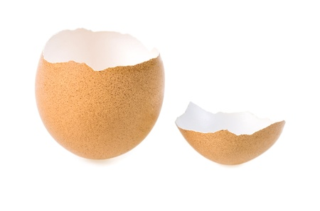 openly: two halves of an eggshell on white background