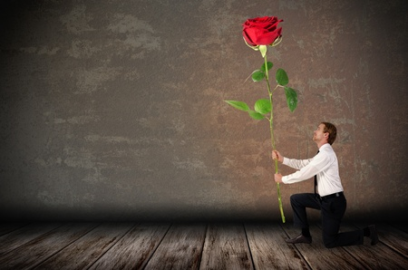 a kneeling man holds a big red rose before rustic background photo