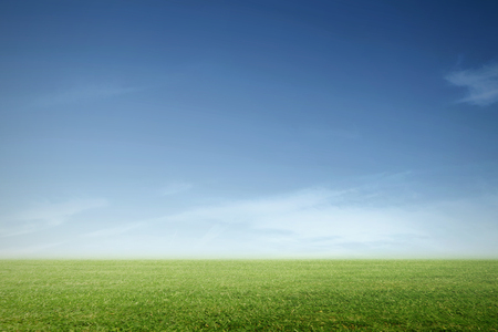 ideally: a green meadow with blue sky