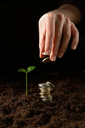 Hands with plant and money photo