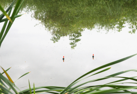 Fishing, two floats in the water, nature, lake Stock Photo