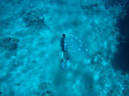 Coral reefs under water, diving, snorkling, active rest