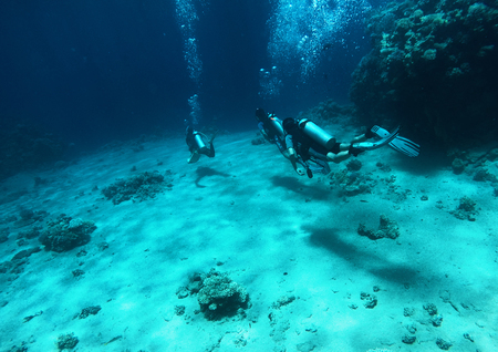 Scuba divers under the water, red sea 版權商用圖片