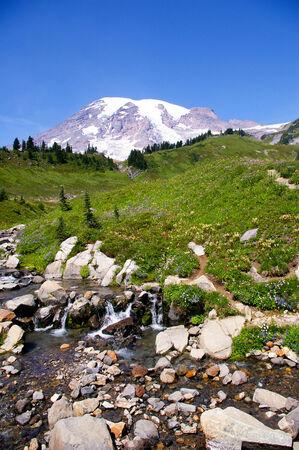rainier: Mount Rainier Stock Photo