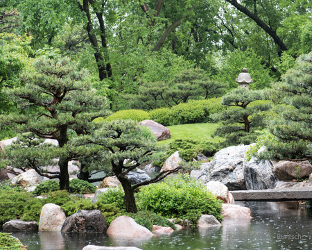 Stone lantern and pond in the rain a Japanese garden
