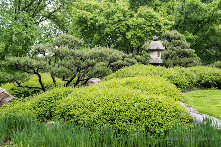 Stone lantern, trees, and shrubs in a Japanese garden Reklamní fotografie
