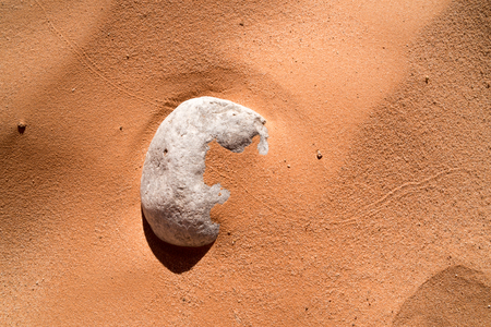 Rock Covered in Sand with Animal Trail Reklamní fotografie