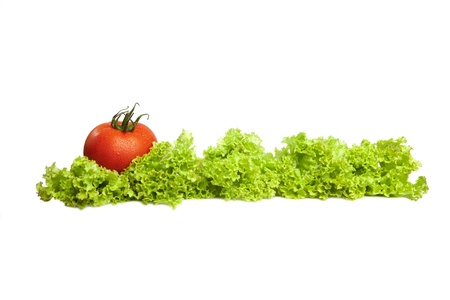 Tomatoes and lettuce on the white background  Stock Photo