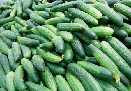 lots of fresh cucumbers  laid out on the counter on the market for sale