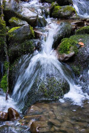 steine im wasser: Mountain Stream zwischen Steinen. Wasser spritzt. Stones.