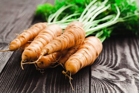 haulm: Ripe fresh carrots on a wooden table in black color. Stock Photo