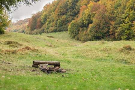A large meadow with trees on both sides. Bench made of logs near a fireplace. Autumn landscape. Stock Photo