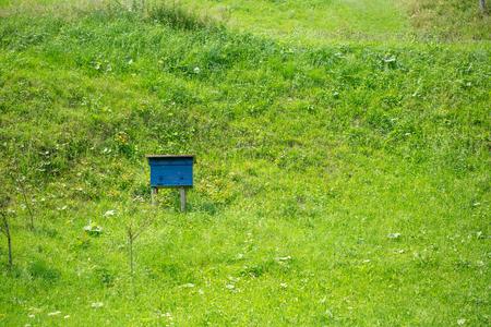 One blue wooden beehive on a green slope. Reklamní fotografie