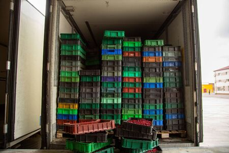 Truck loading. Plastic boxes with ripe berries are loaded into the refrigerator. Transport. Imagens - 145265275
