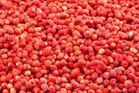 Frozen fresh wild strawberries. Food background of berries. Frame filled with wild strawberries. Top view. Imagens