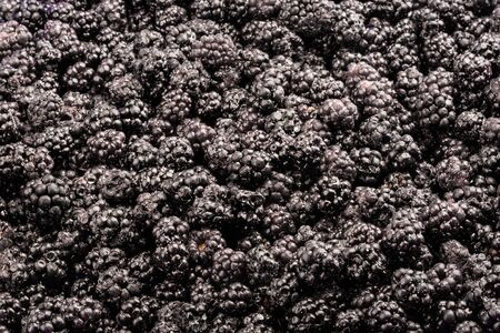 Frozen fresh mulberry. Food background. Top view. Imagens