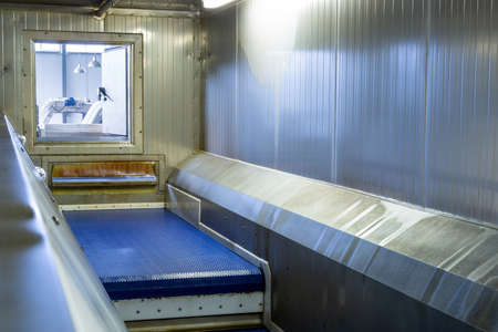 Conveyor belt in the instant freezing chamber for berries, fruits and vegetables.