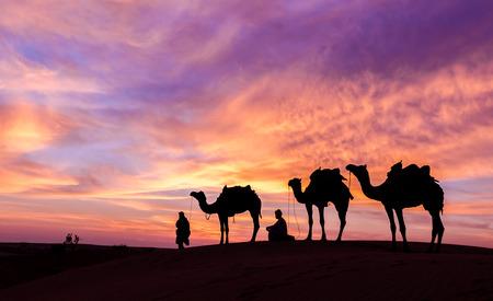 ラジャスタン砂漠のラクダと人間との劇的な空