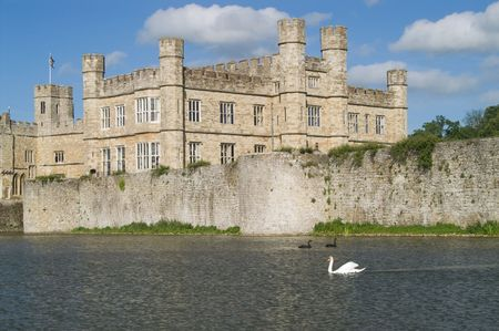 Leeds castle, mote and black and white swans