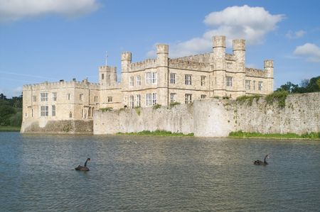 Leeds castle, mote and black swans