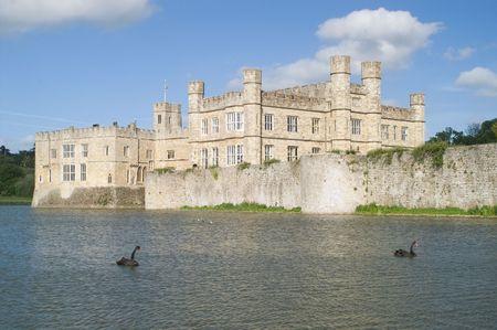 Leeds castle, mote and black swans