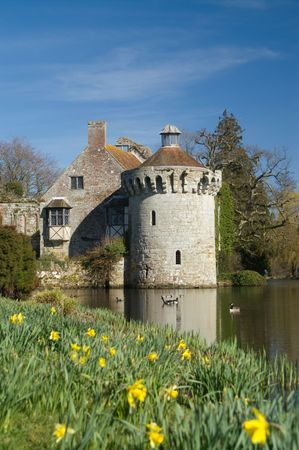 Fortified house with mote and geese with dafodills in the foreground Stock Photo