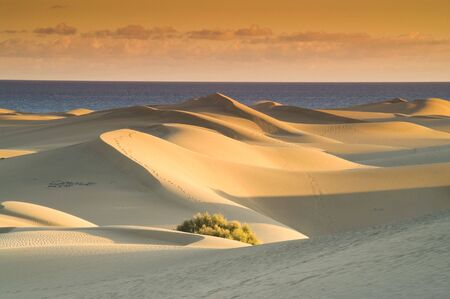 Sand dunes at sunset with sea and sky in the background