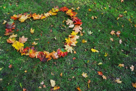 Autumn maple leaves laid out in the shape of heart on green grass in city Park