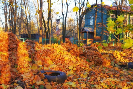 Picturesque autumn landscape - a two-storey wooden house with a fence and maple leaves in the foreground.