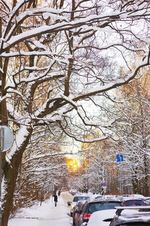 Wonderful urban winter landscape after heavy snowfall during sunset. In the foreground is a tree with intricately intertwined branches, covered with snow caps. Stock Photo