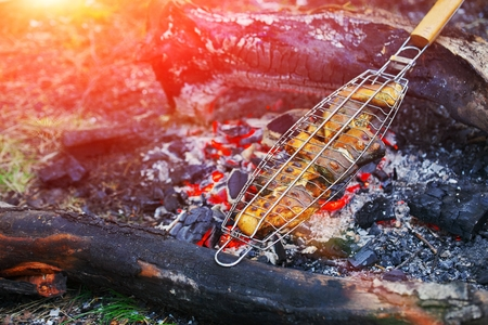 Fried fish grilled on the dying embers. Concept - healthy food and camping.