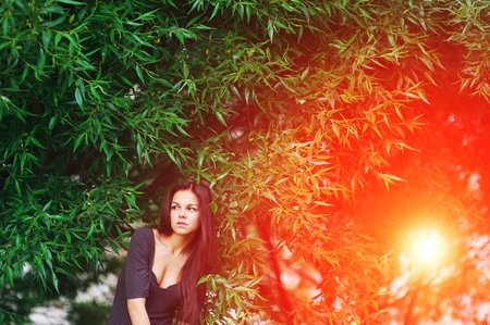 Portrait of a beautiful slender young brunette woman with well-groomed long hair posing around willow while walking in the summer Park in the bright rays of the sunset.