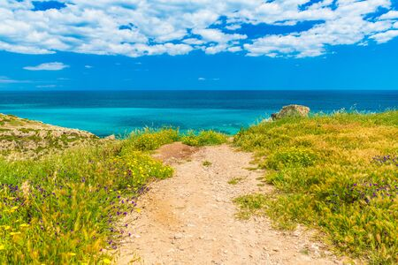 Picturesque road to the sea coast. Beautiful landscape with turquoise water, deep blue sky with clouds, grass and blooming flowers