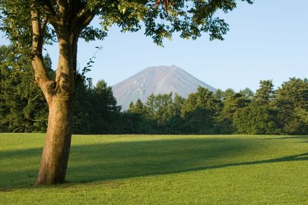 A golf course, Japanese style. photo