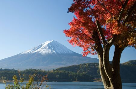 Lakeside view of Mount Fuji with beautiful Fall leaves in foreground Stock Photo