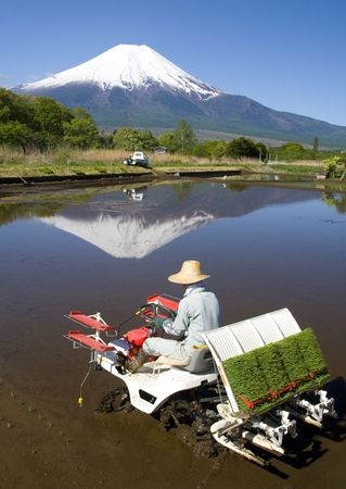 Modernized rice planting in Japan at the foot of Mount Fuji Stock Photo