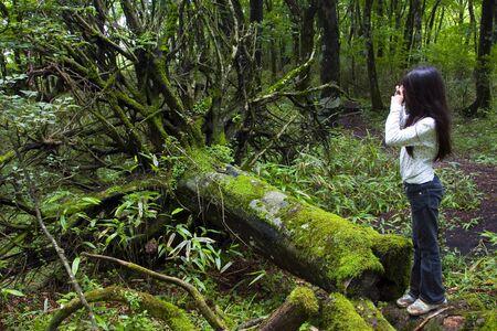 Una joven toma una foto de un árbol arrancado en el exuberante bosque