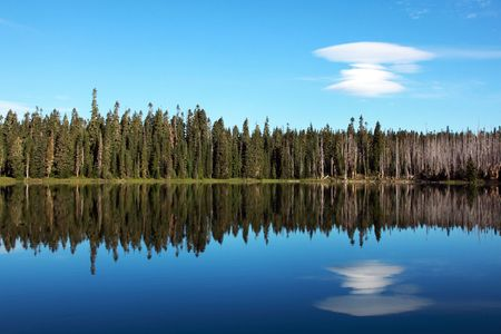 lenticular: Reflection in a mountain lake of a row of Pines with an unusual cloud