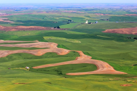 palouse: Beautiful patchwork of farm hills in Palouse, Washington
