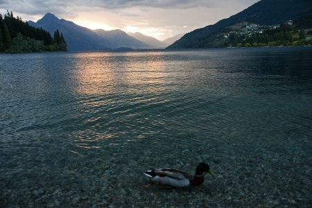 Evening view of the lake near Queenstown photo