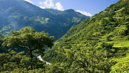 Green valley in the lower Himalayan peaks