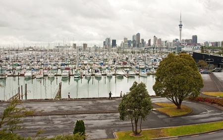 View of downtown Auckland with the marina