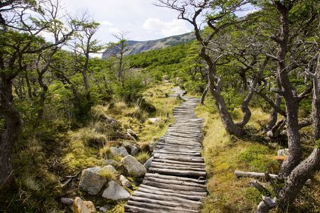 A typical trail in the region of Cerro Torre Stock Photo